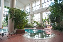 Pool inside the building, surrounded by plants royalty free stock image