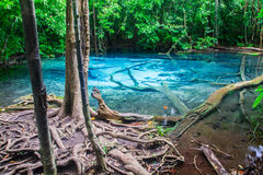 Pool at Krabi Province in Thailand. Stock Photos