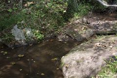 Pool and large rocks. A pool of water formed by a small stream in the forest surrounded by large rocks stock image