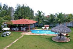 Pool and lawn. View of a pool with surrounding lawn bar and shade Stock Photography