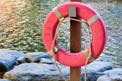 Pool with life buoy Stock Image