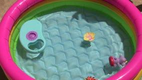 Pool stock video footage