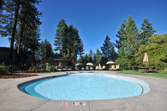 Pool with lounge chairs and trees Stock Photography
