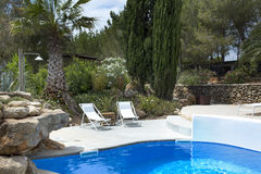 Pool. A luxury private swimming pool surrounded by a paradise garden Stock Photography