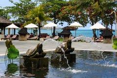 Pool mit Lilien und Palmen um es Meerblick von Indonesien stockbild