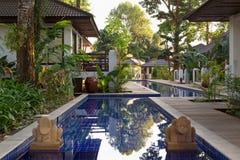 Pool mit Palmen in einem exotischen Hotel Stockfotografie