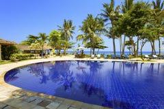 Pool, ocean, palm trees Stock Image