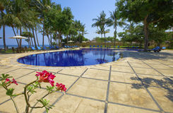 Pool, ocean, palm trees and flower in the foregrou Stock Photo