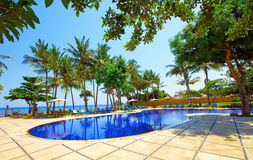 Pool, ocean, palm trees Indonesia. Bali Stock Photography