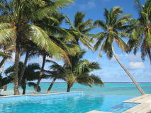 Pool by the Ocean. Tropical resort. Rarotonga Stock Photo