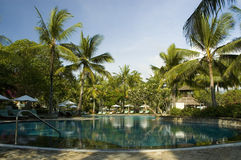 Pool and palm trees. Around Bali Indonesia Series. Empty pool with palm trees in background Royalty Free Stock Image