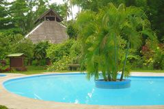 Pool with palm trees. Hotel pool with palm trees in the Philippines Royalty Free Stock Image
