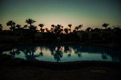 Pool with palm trees near the ocean during a beautiful sunset. Summer vocation Royalty Free Stock Photography