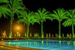 Pool with palm trees in resort at night. Pool with green palm trees in resort at night Stock Photo