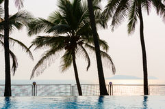 Pool, palm trees, sea and sunset Royalty Free Stock Photo