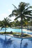 Pool and palm in a tropical resort. In Dominican Republic, some palms around the pool on a sunny day stock image