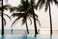 Pool, palmen, overzees en zonsondergang royalty-vrije stock foto