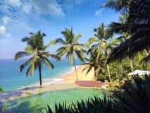 Pool am Rand des Felsens, der den Ozean und die Palmen übersieht Lizenzfreie Stockfotografie
