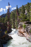 The Pool rapids in Rocky Mountains Royalty Free Stock Photo