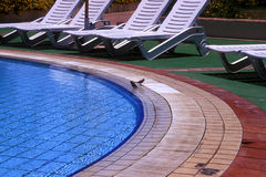 Pool resort. This swimming pool in a spain resort Stock Photography