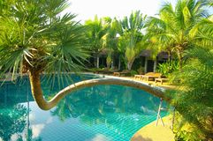 Pool of ressort  in Thailand Stock Photography