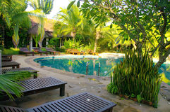 Pool of ressort  in Thailand Stock Photos