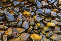 Pool of rocks Stock Photography