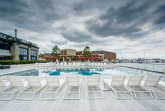 The pool at the Sagamore Pendry Hotel in Fells Point, Baltimore, Maryland.  royalty free stock photo