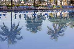 Pool side lounge chairs and palm tree reflection Stock Photos