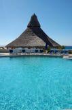pool simning Arkivfoton
