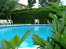 pool simning Arkivbilder