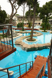pool simningtrees Arkivbild