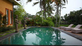 The pool and sun loungers in the Villa on the background of palm trees stock video