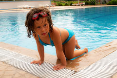 In the pool. Stock Images