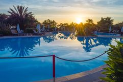 Pool at sunrise with loungers and palm trees. And all kind of trees royalty free stock photos