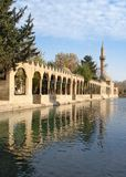 Pool of Abraham with Sacred Fish known as Balikli Gol in Turkish in Urfa, famous turist and religion center in South East Turkey stock photo