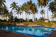 Pool surrounded by palm trees. Hotel swimming pool surrounded by coconut trees royalty free stock images