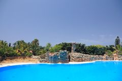 Pool at Tenerife island. Stock Images