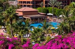 Pool at Tenerife island - Canary Stock Photos