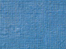 Pool Tile Background. High detail Royalty Free Stock Image