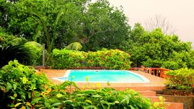 Pool on a tropical downpour in the Seychelles. At day stock footage