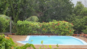Pool on a tropical downpour in the Seychelles stock video footage