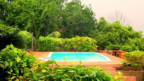Pool on a tropical downpour in the Seychelles. At day stock video footage