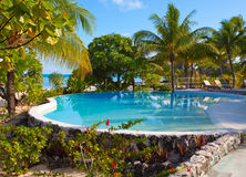 Pool in tropical garden Stock Photography