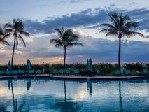 Pool at tropical resort. Empty pool at tropical resort at the morning Royalty Free Stock Photo