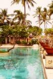 Pool in tropics Stock Photo
