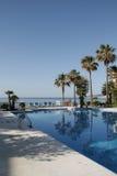 Pool und Palmen Stockfotos