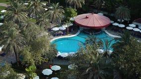 Pool unter Palmen Ansicht von oben stock video footage