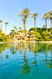 Pool of water with row of palm trees Royalty Free Stock Photo