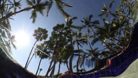 In pool waters stock video footage